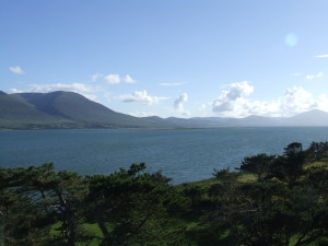 Seaview Landscapes Ltd View Tralee Co.Kerry post photo
